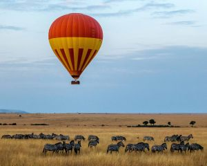 Safari Travel Insurance