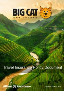 Big Cat Travel Insurance